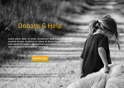 Charity Organization Template