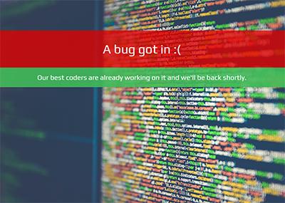 Code Bug Template