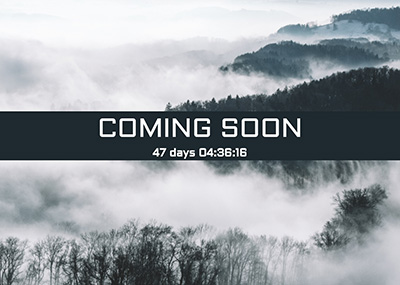 Forest in the Fog Template